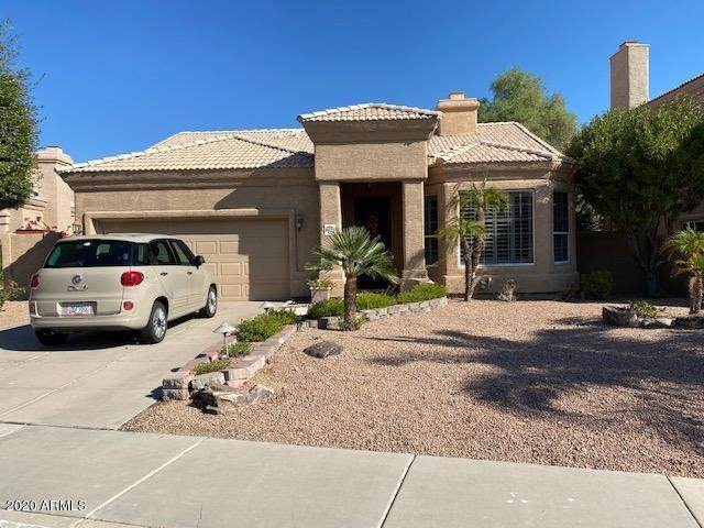 16120 E Glenview Drive, Fountain Hills, AZ 85268 (MLS #6149280) :: The Everest Team at eXp Realty