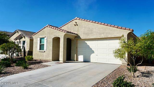 306 W Salali Trail, San Tan Valley, AZ 85140 (MLS #6150816) :: The Everest Team at eXp Realty