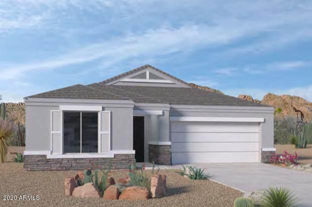 1826 E Saguaro Park Lane, Phoenix, AZ 85024 (MLS #6151735) :: Sheli Stoddart Team | M.A.Z. Realty Professionals