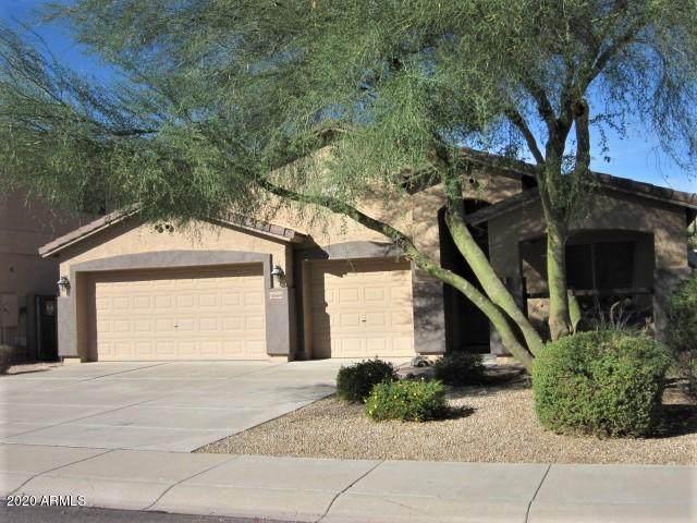 10668 E Marigold Lane, Florence, AZ 85132 (MLS #6160690) :: Arizona Home Group