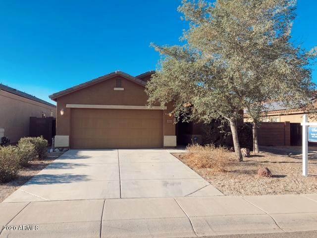 30431 W Catalina Drive, Buckeye, AZ 85396 (MLS #6165178) :: Devor Real Estate Associates