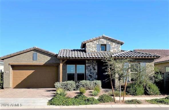 5231 S Wildrose, Mesa, AZ 85212 (#6165184) :: Long Realty Company