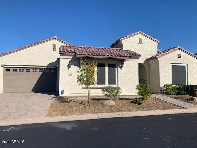222 E Brisa Drive, Phoenix, AZ 85085 (MLS #6165968) :: Homehelper Consultants