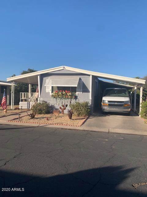 10960 N 67th Avenue #174, Glendale, AZ 85304 (MLS #6166096) :: The W Group