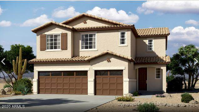 571 E Angel Drive, Chandler, AZ 85249 (MLS #6166902) :: The Everest Team at eXp Realty