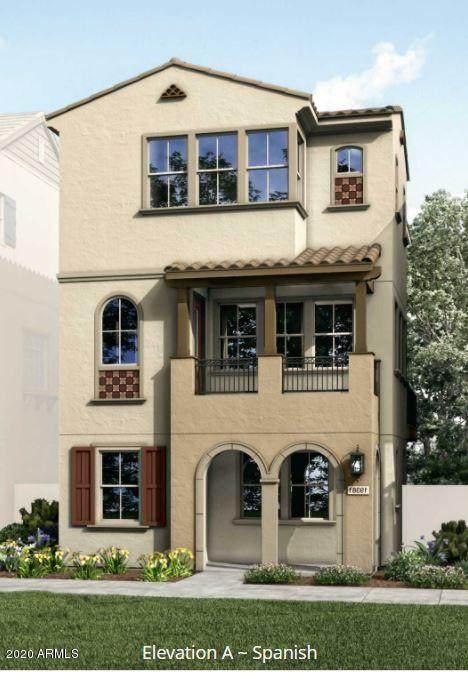 1636 E Dogwood Lane, Gilbert, AZ 85295 (MLS #6167870) :: Conway Real Estate