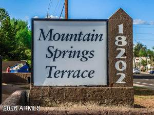 18202 N Cave Creek Road #104, Phoenix, AZ 85032 (MLS #6167960) :: Balboa Realty