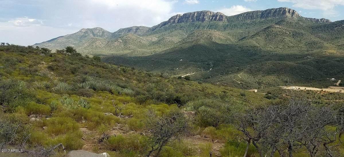 TBD Mountain Lion Pass - Photo 1