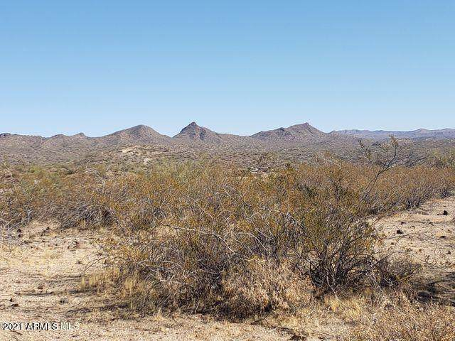 00 Grantham Hills Trail 8E, Wickenburg, AZ 85390 (MLS #6179939) :: Long Realty West Valley