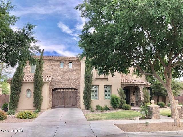 20339 E Camina Buena Vista, Queen Creek, AZ 85142 (MLS #6180154) :: The Newman Team