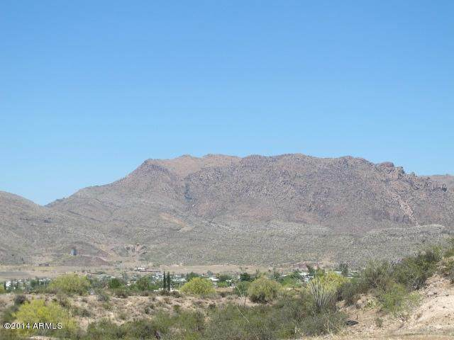 1709 S Thompson Drive, Superior, AZ 85173 (MLS #6183457) :: The Property Partners at eXp Realty