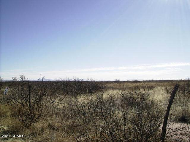 11145042 Davis Road, McNeal, AZ 85617 (MLS #6183551) :: Nate Martinez Team