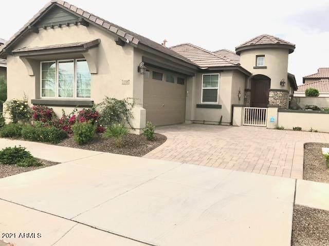 5108 S Salk Lane, Mesa, AZ 85212 (MLS #6184202) :: Power Realty Group Model Home Center
