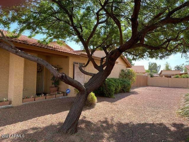 14837 N 25TH Drive #5, Phoenix, AZ 85023 (MLS #6185054) :: Yost Realty Group at RE/MAX Casa Grande