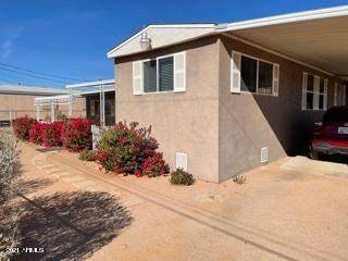 2680 W Manzanita Street, Apache Junction, AZ 85120 (MLS #6186404) :: Maison DeBlanc Real Estate