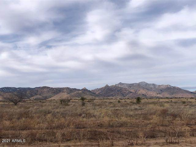 TBD Quinn Road, Pearce, AZ 85625 (MLS #6188634) :: The Carin Nguyen Team