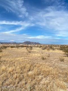 0 S Mckinley Avenue, Tonopah, AZ 85354 (MLS #6189768) :: The Newman Team