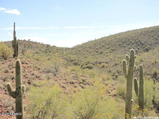 00xxx Lake Pleasant Road - Photo 1