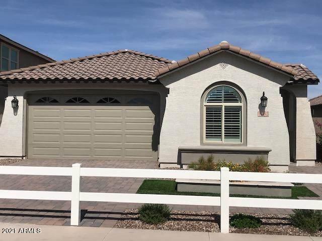 15172 W Moreland Street, Goodyear, AZ 85338 (MLS #6196794) :: Yost Realty Group at RE/MAX Casa Grande