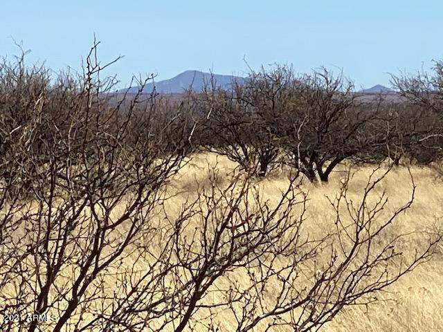 TBD S Calle Mia Road, Hereford, AZ 85615 (MLS #6197519) :: Howe Realty