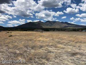 10551 N Swede Drive, Flagstaff, AZ 86004 (MLS #6197610) :: Executive Realty Advisors