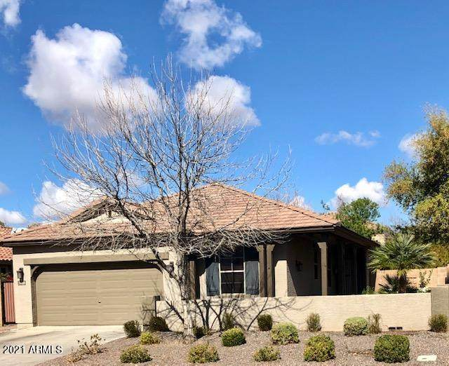 2698 E Boston Street, Gilbert, AZ 85295 (MLS #6199357) :: NextView Home Professionals, Brokered by eXp Realty
