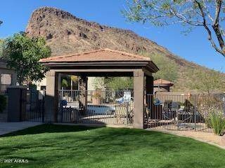 10055 N 142ND Street #1330, Scottsdale, AZ 85259 (MLS #6203498) :: The Newman Team
