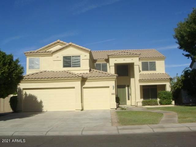 1042 W Wildhorse Drive, Chandler, AZ 85286 (MLS #6203510) :: Zolin Group
