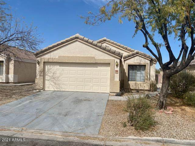 6628 E Lush Vista View, Florence, AZ 85132 (MLS #6204392) :: Yost Realty Group at RE/MAX Casa Grande