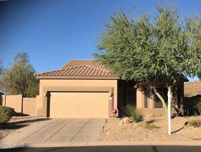 7754 E Wolf Canyon Street, Mesa, AZ 85207 (MLS #6205375) :: Klaus Team Real Estate Solutions