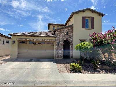 1597 E Verde Boulevard, San Tan Valley, AZ 85140 (MLS #6215671) :: Yost Realty Group at RE/MAX Casa Grande