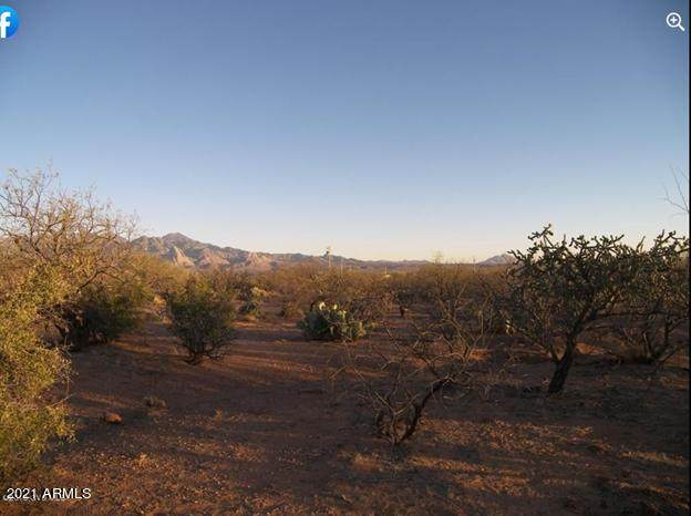 3901 W Calle Seis, Green Valley, AZ 85622 (MLS #6216567) :: Long Realty West Valley