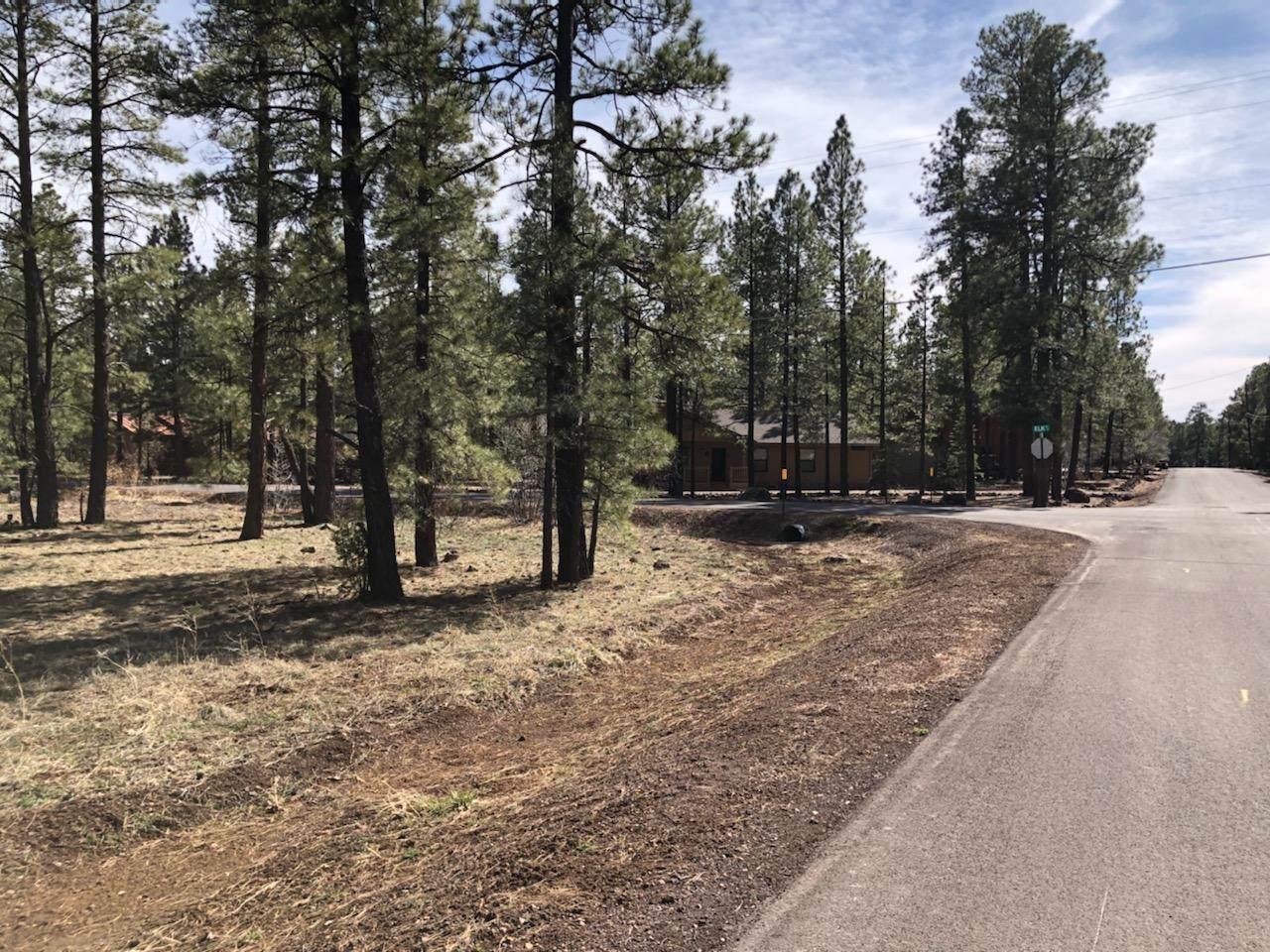 7509 Tall Pine Drive - Photo 1