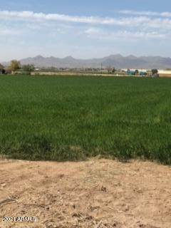0 220th Lane, Buckeye, AZ 85326 (MLS #6218717) :: Long Realty West Valley