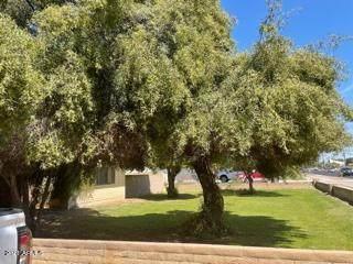 4422 W Geenway Road, Glendale, AZ 85306 (MLS #6220200) :: The Garcia Group