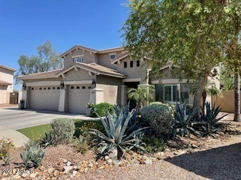 16911 W Statler Street, Surprise, AZ 85388 (MLS #6220701) :: Keller Williams Realty Phoenix