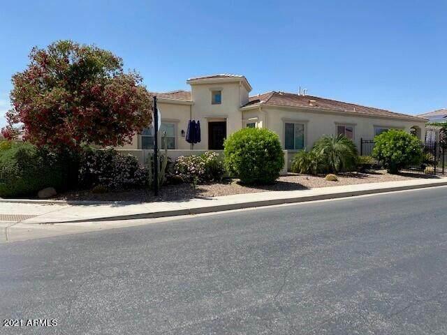 37130 N Stoneware Drive, Queen Creek, AZ 85140 (MLS #6221351) :: The Garcia Group