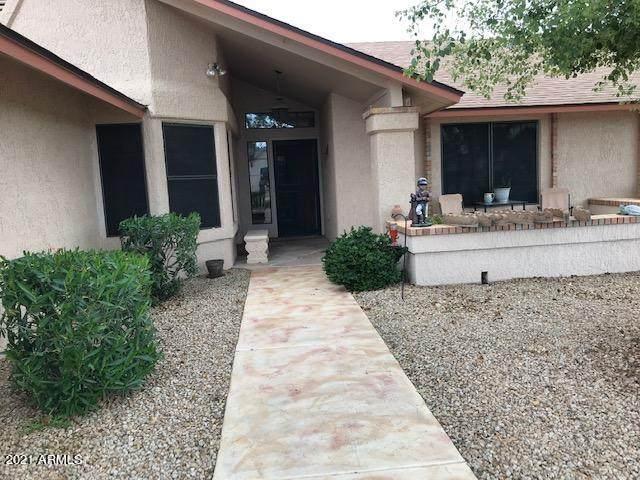 14106 W White Rock Drive, Sun City West, AZ 85375 (MLS #6221461) :: Service First Realty