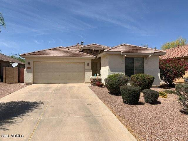 35510 N Belgian Blue Court, San Tan Valley, AZ 85143 (MLS #6223405) :: Klaus Team Real Estate Solutions