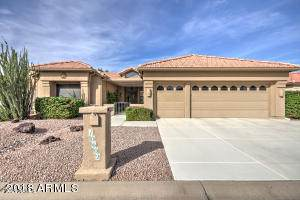 10602 E Voax Drive, Sun Lakes, AZ 85248 (MLS #6223481) :: Walters Realty Group