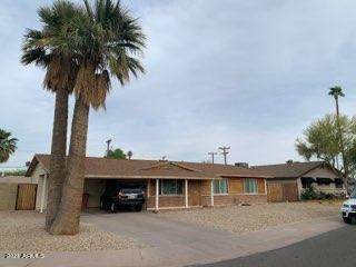 2423 N 69TH Street, Scottsdale, AZ 85257 (MLS #6223657) :: The Property Partners at eXp Realty