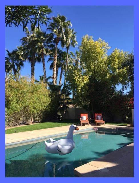1302 W Windrift Way, Gilbert, AZ 85233 (MLS #6223848) :: Yost Realty Group at RE/MAX Casa Grande