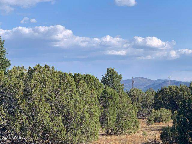 174 Co Rd  3187 9 Acres Lot C - Photo 1