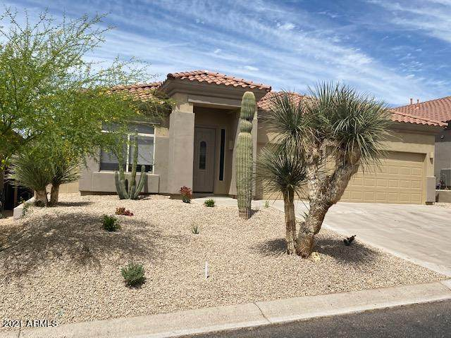 10448 E Acoma Drive, Scottsdale, AZ 85255 (MLS #6224087) :: Zolin Group