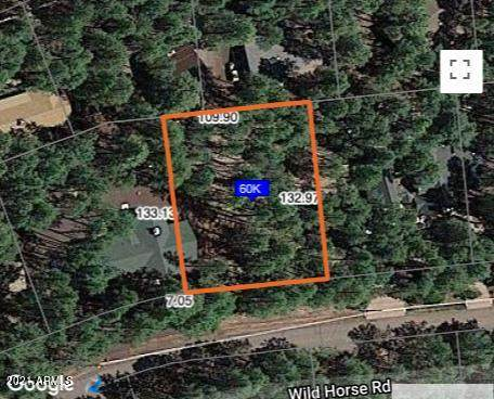 8486 Wild Horse Road, Pinetop, AZ 85935 (MLS #6225361) :: The Carin Nguyen Team