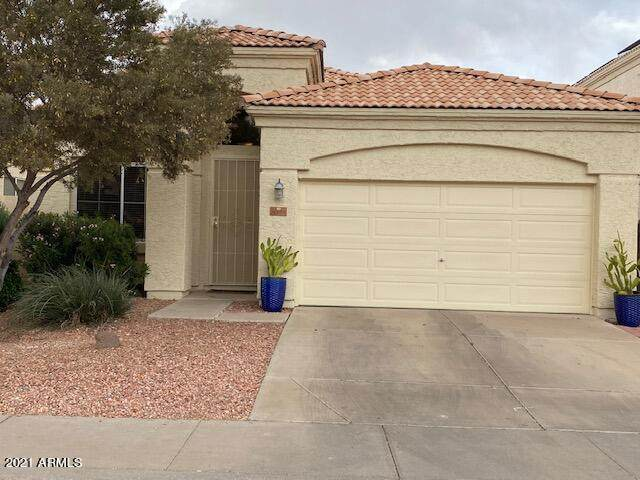 3322 W Ross Drive, Chandler, AZ 85226 (MLS #6225645) :: Yost Realty Group at RE/MAX Casa Grande