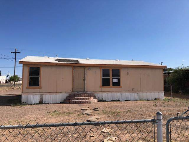 2436 N Mckinley Street, Pirtleville, AZ 85626 (MLS #6225654) :: Yost Realty Group at RE/MAX Casa Grande
