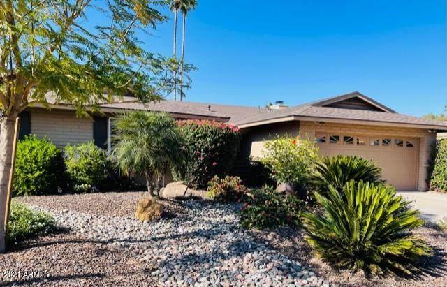 8344 E Via De Encanto, Scottsdale, AZ 85258 (MLS #6226006) :: The Luna Team