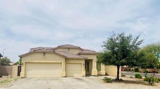 1814 S 116TH Lane, Avondale, AZ 85323 (MLS #6226528) :: Yost Realty Group at RE/MAX Casa Grande