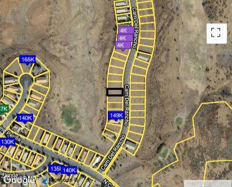 Lot 7 E Camino Del Rancho, Douglas, AZ 85067 (MLS #6230014) :: The Riddle Group